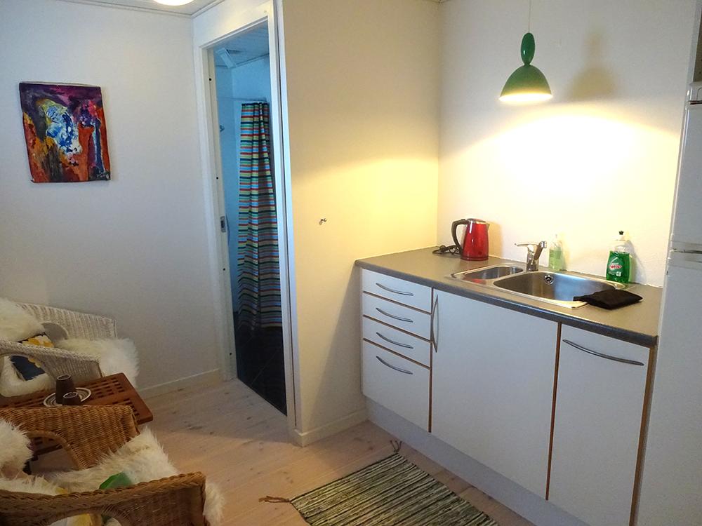 Køkken, der er køleskab/fryser, kogeplade og mikrobølgeovn